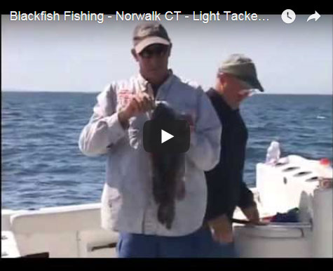 BLACKFISHING VIDEOS